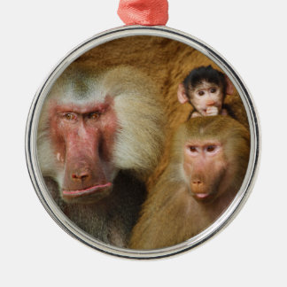 Family of Baboons Papio Hamadryas Cologne Zoo Metal Ornament