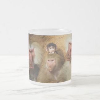Family of Baboons Papio Hamadryas Cologne Zoo 10 Oz Frosted Glass Coffee Mug