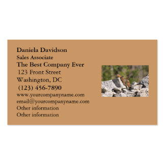 Family of Chipmunks Business Card Templates