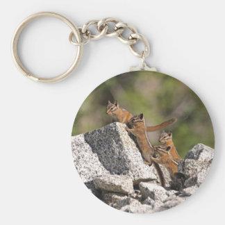 Family of Chipmunks Keychains