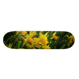 Family Of Daffodils Skateboard Deck