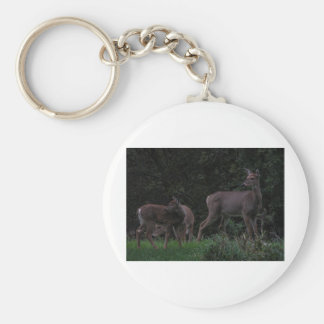Family of Deer Keychain