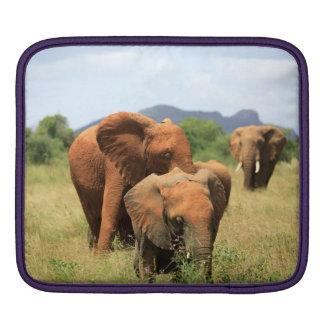 Family of elephants iPad sleeve