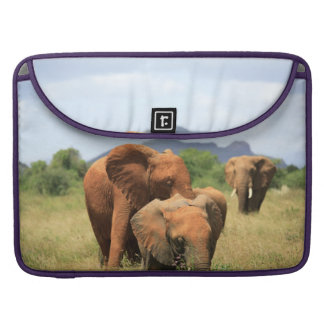 Family of elephants MacBook pro sleeve