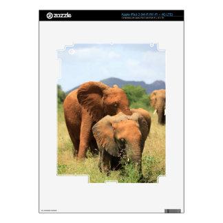 Family of elephants skin for iPad 3