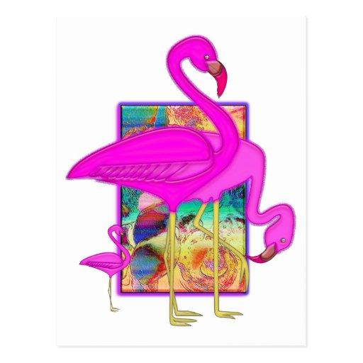 Family of Flamingos Postcard