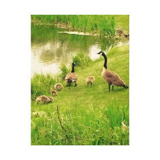 Family of Geese by the Pond Canvas Print
