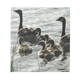 Family of Geese on Lake Notepads
