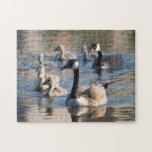 Family of Geese Puzzle