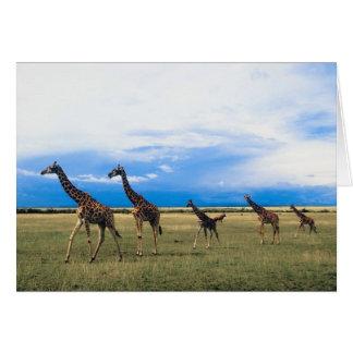 Family of Giraffes Card