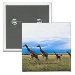 Family of Giraffes Pins