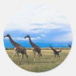 Family of Giraffes Sticker