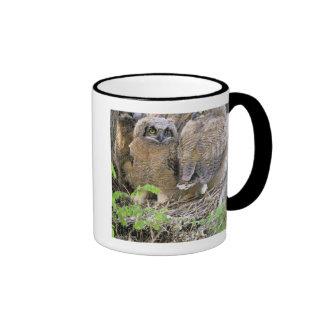 Family of Great Horned Owlets (Bubo virginianus) Ringer Mug