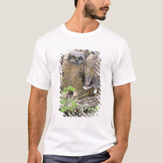 Family of Great Horned Owlets (Bubo virginianus) T-Shirt