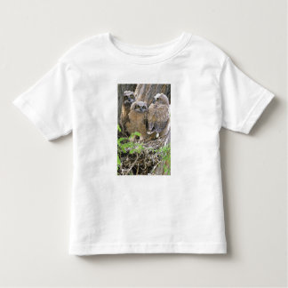 Family of Great Horned Owlets (Bubo virginianus) Toddler T-shirt