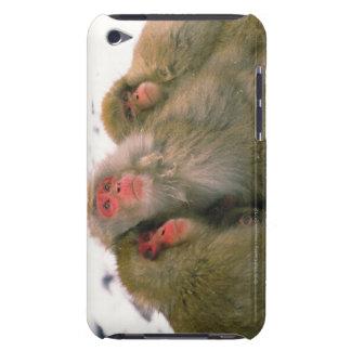 Family of Japanese macaque, Jigokudani, iPod Case-Mate Case