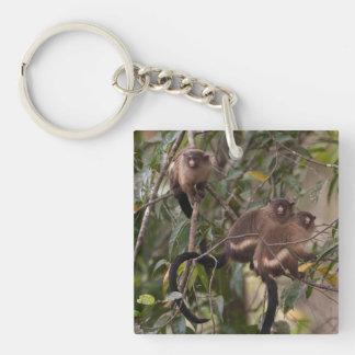 Family of Marmoset Monkeys Keychain