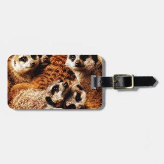 Family of Meerkats Bag Tag