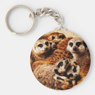 Family of Meerkats Basic Round Button Keychain