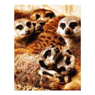 Family of Meerkats Letterhead