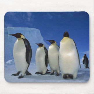 """FAMILY OF PENGUINS"" MOUSE PAD"