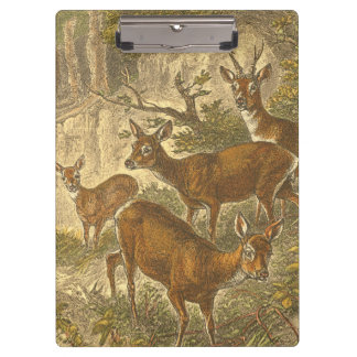 Family of Roe - Deers in a Forest Clipboard