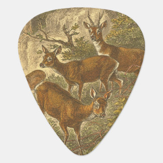Family of Roe - Deers in a Forest Guitar Pick