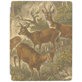 Family of Roe - Deers in a Forest iPad Smart Cover