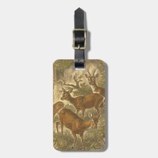 Family of Roe - Deers in a Forest Luggage Tag