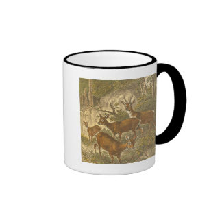 Family of Roe - Deers in a Forest Coffee Mugs