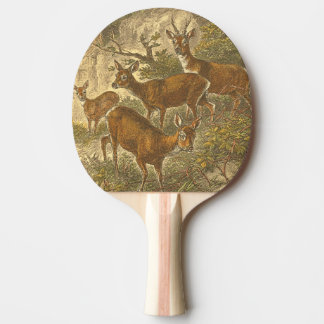 Family of Roe - Deers in a Forest Ping Pong Paddle