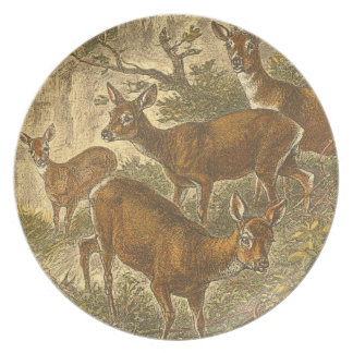 Family of Roe - Deers in a Forest Plate