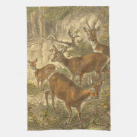 Family of Roe - Deers in a Forest Towel