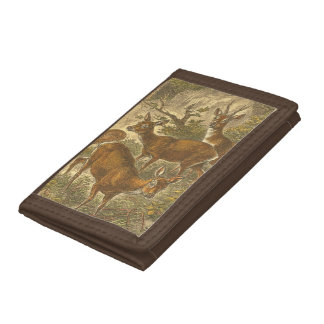 Family of Roe - Deers in a Forest Trifold Wallets