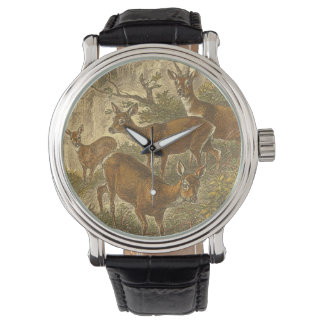 Family of Roe - Deers in a Forest Wristwatch