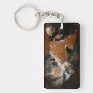 Family of sleepy kittens keychain