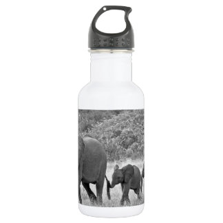 Family of South African elephants 18oz Water Bottle