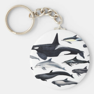 Family of the dolphins: orcas, dolphins, marsopas keychain