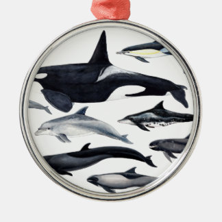 Family of the dolphins: orcas, dolphins, marsopas metal ornament