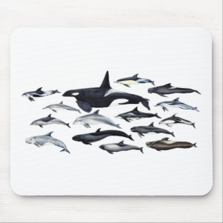 Family of the dolphins: orcas, dolphins, marsopas mouse pad