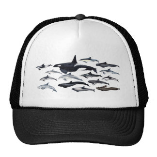 Family of the dolphins: orcas, dolphins, marsopas trucker hat