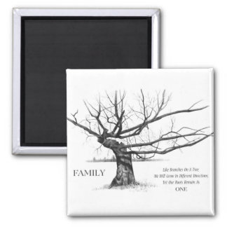 FAMILY: Pencil Art: Gnarly Old Tree: Family Ties Magnet