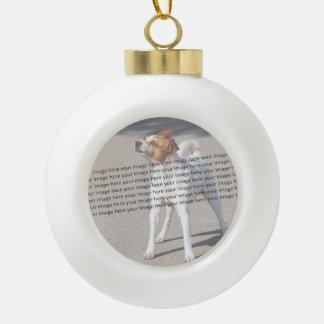 Family Pet Photo Ceramic Ball Christmas Ornament