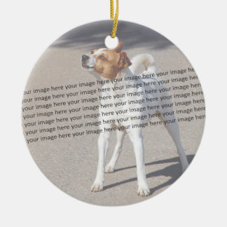 Family Pet Photo Double-Sided Ceramic Round Christmas Ornament