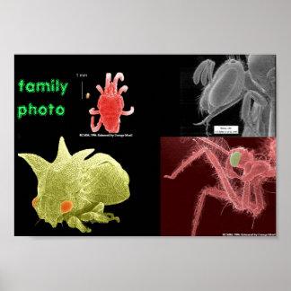 family photo poster