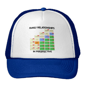 Family Relationships In Perspective (Reunion) Trucker Hat