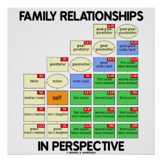 Family Relationships In Perspective (Reunion) Poster