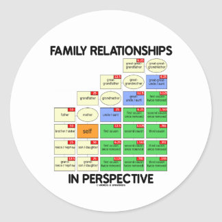 Family Relationships In Perspective Reunion Round Sticker