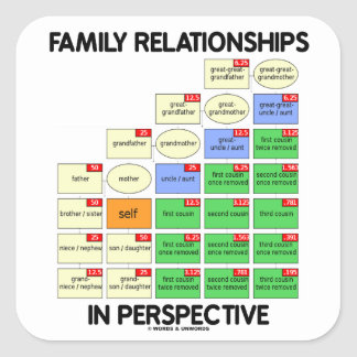 Family Relationships In Perspective Reunion Stickers