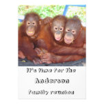 Family Reunion Funny and Cute Card